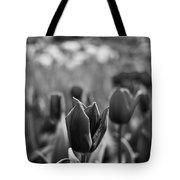 Tulip 107 Tote Bag