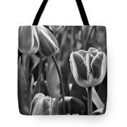 Tulip 41 Tote Bag
