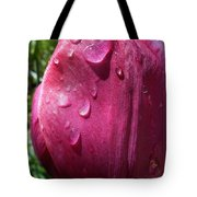 Tulip After The Rain Tote Bag