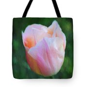 Tulip Apricot Beauty Tote Bag