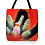 Tulip At Amatzia Forest - 5 Tote Bag
