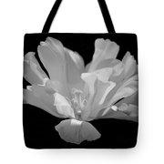 Tulip - Bw Tote Bag