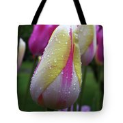 Tulip Close-up 2 Tote Bag