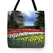 Tulip Country Tote Bag