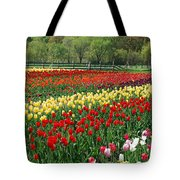 Tulip Fields Tote Bag