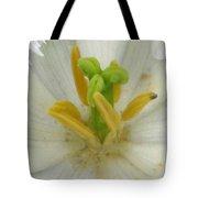 Tulip - Fringed Honeymoon Tote Bag