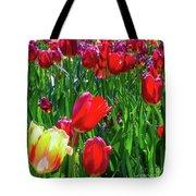 Tulip Garden In Bloom Tote Bag