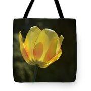 Tulip Glow Tote Bag