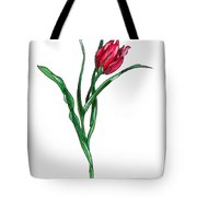 Tulip Illustration Tote Bag