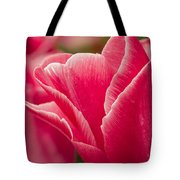 Tulip Layers Tote Bag