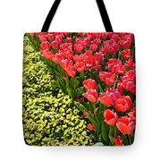 Tulip Line Tote Bag