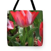 Tulip Magic Tote Bag