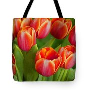 Tulip Patch Tote Bag