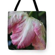 Tulip Perfection Tote Bag