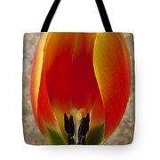 Tulip Petals Tote Bag by Garry Gay