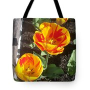 Tulip Red And Orange Tote Bag