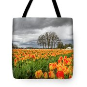 Tulip Rows Tote Bag