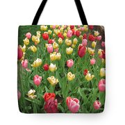 Tulip Time Trail Tote Bag