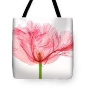Tulip, X-ray Tote Bag