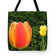 Tulipfest 4 Tote Bag
