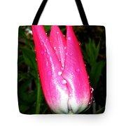 Tulipfest 6 Tote Bag