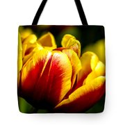 Tulips 7 Tote Bag