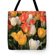 Tulips Ablaze With Color Tote Bag