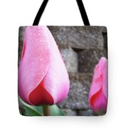Tulips Artwork Flowers 26 Pink Tulip Flowers Art Prints Nature Floral Art Tote Bag