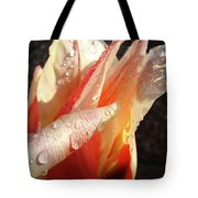 Tulips Artwork Flowers Floral Art Prints Spring Peach Tulip Flower Macro Tote Bag