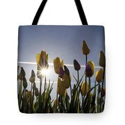 Tulips Blooming With Sun Star Burst Tote Bag