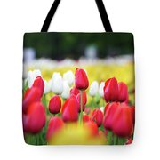 Tulips By Jared Windmuller - Tulip - Red -  Tote Bag