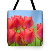 Tulips Close Up  Tote Bag