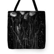 Tulips Decaying At Sunset Tote Bag