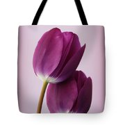 Tulips Tote Bag by Diane Reed