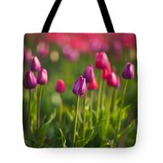 Tulips Dream Tote Bag
