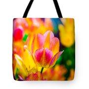 Tulips Enchanting 16 Tote Bag