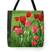 Tulips Flowers Art Prints Spring Tulip Flower Artwork Nature Art Tote Bag