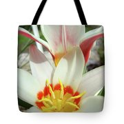 Tulips Flowers Artwork 1 Tulip Flower Art Prints Spring Floral Art White Tulips Garden Tote Bag