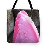 Tulips Flowers Artwork Tulip Flower Art Prints Macro Floral Art Tote Bag