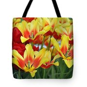 Tulips Glorious Tulip Monsella Tote Bag by Debra  Miller