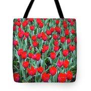 Tulips In Kristiansund, Norway Tote Bag