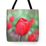 Tulips In Spring 4 Tote Bag