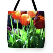 Tulips In The Light Tote Bag