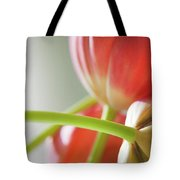 Tulips In The Morning Tote Bag by Theresa Tahara