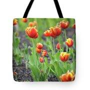 Tulips In The Springtime Tote Bag
