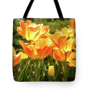 Tulips In The Sunlight Tote Bag