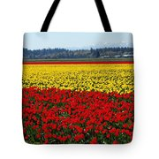 Tulips Of The Skagit Valley Tote Bag