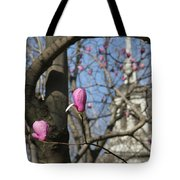 Tulips On Trees  Tote Bag