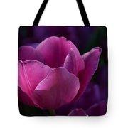 Tulips Purple Layers Tote Bag