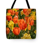 Tulips Yellow And Tangerine Tote Bag